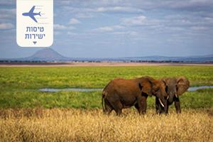 טיול לטנזניה וזנזיבר – ספארי וטעימה מזנזיבר