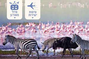 טיול מאורגן לטנזניה – ספארי בקצב הג'מבו