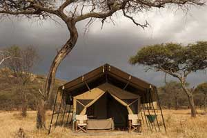 Ndutu Kati Kati – South Serengeti Safari Camp
