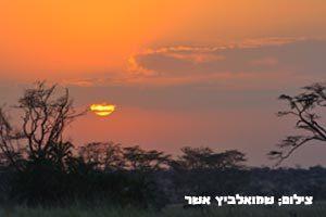 יום-בטיול-לטנזניה---טנזניה-טריפ-1