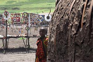 התנדבות בטנזניה