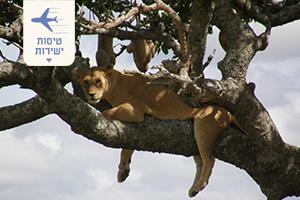 טיול ספארי בטנזניה