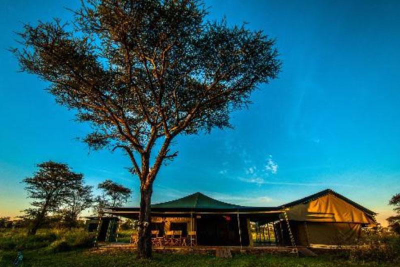 angata-camps4