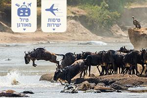 הנדידה הגדולה בטנזניה