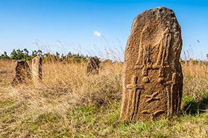טנזניה טריפ - טיולים מאורגנים