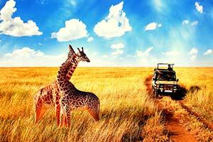 מתכננים טיול בטנזניה? מדריך למטייל חלק א'